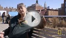 Sue in the City: New York Landscapes